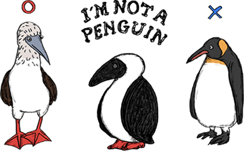 I'M NOT A PENGUIN